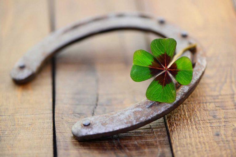 Silvester feiern: Pflanzenorakel, Glücksbringer und Glückssymbole