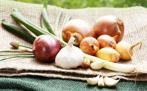 Stärken Sie Ihr Immunsystem mit der Zwiebel! – Wie funktioniert's?