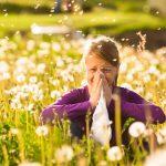 Heuschnupfen vorbeugen und behandeln mit Tragantwurzelextrakt