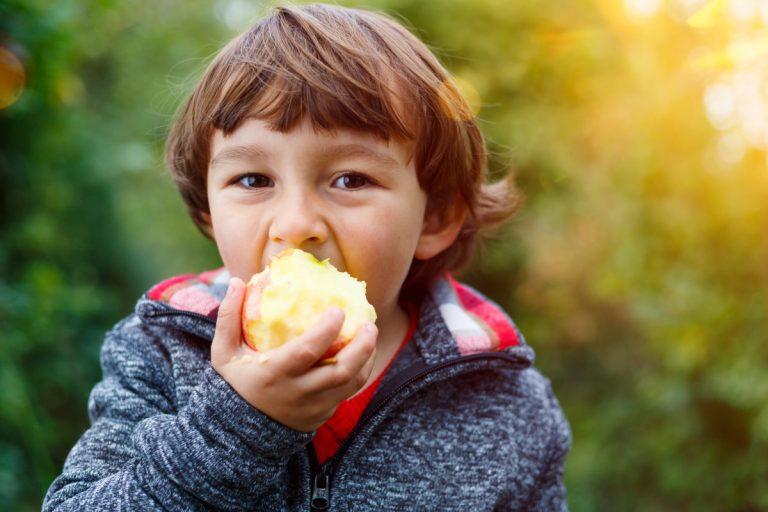 So schaffen Sie es, Kinder gesund zu ernähren