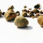 Homöopathie bei Gallenkolik: Was hilft im Akutfall?