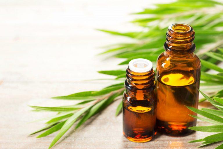 Teebaumöl: Können Sie es bedenkenlos verwenden?