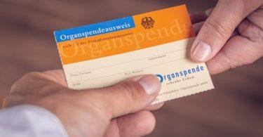 Organspendeausweis: Eine Entscheidung fürs Leben