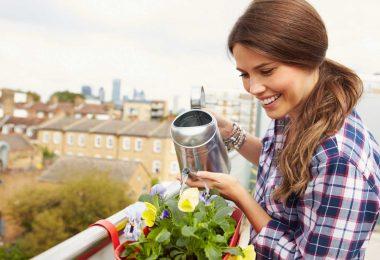 Ob traditionell oder farbenfroh: Balkonpflanzen regelmäßig düngen