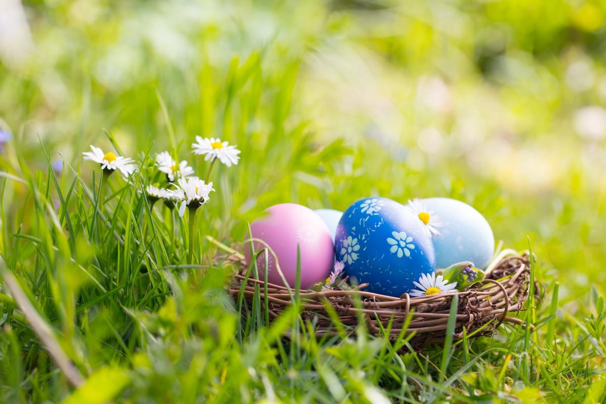 Ostereier färben: Tipps fürs Bemalen, Dekorieren und Verzieren