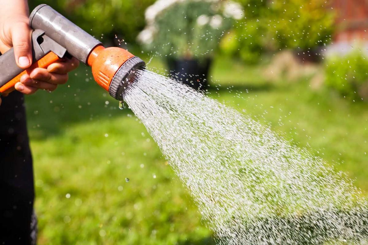 So sparen Sie Wasser im Garten ein