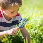 Spiele in der Natur: Mit Kindern die Umwelt entdecken