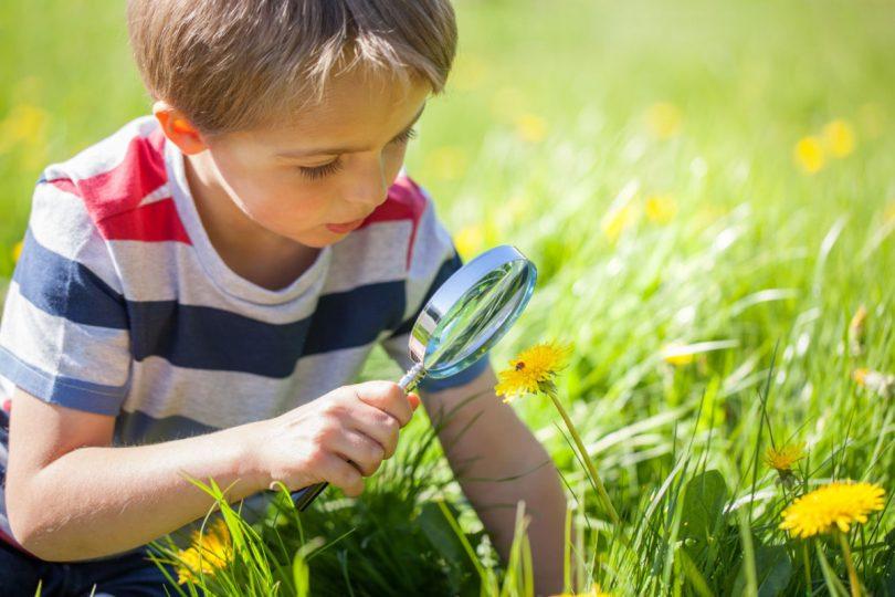 c12c50be3af3bb Spiele in der Natur  Mit Kindern die Umwelt entdecken - experto.de