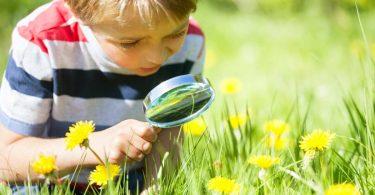Warum Kinder die Nähe zur Natur brauchen