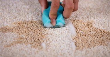 So entfernen Sie alle Flecken aus Ihrem Teppich