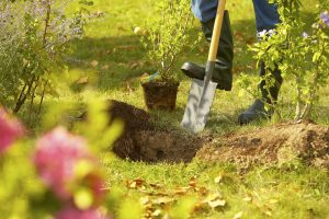 Bodenbearbeitung mit Schaufel oder Spaten?