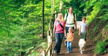 Wandern mit Kindern: Tipps für eine Familienwanderung