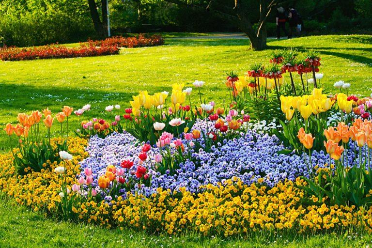 Beetgestaltung - so wird Ihr Garten zu einem Paradies