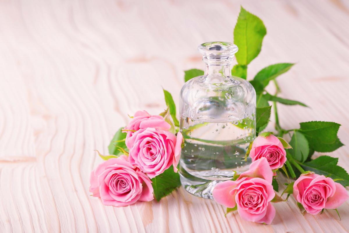 Rosenöl und Rosenduft - Wellness für Haut und Körper