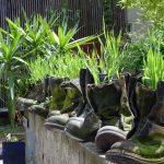 Originellen Steingarten mit alten Schuhen gestalten