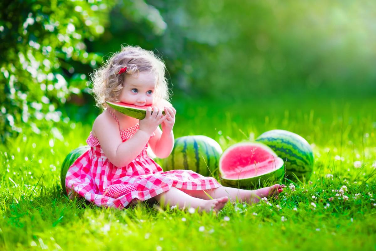gesund und schlank essen