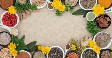 Ayurveda - was bedeuten die sechs Geschmacksrichtungen für Sie?