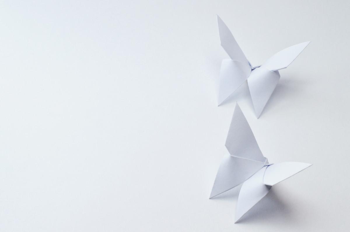 Basteln Im Urlaub Schmetterlinge Aus Papier Falten Expertode