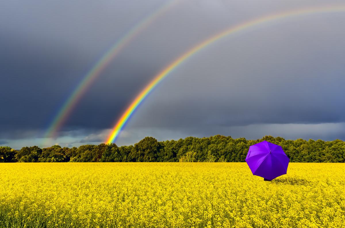 Wettermix: So gelingt ein Regenbogen-Foto mit dramatischem Himmel