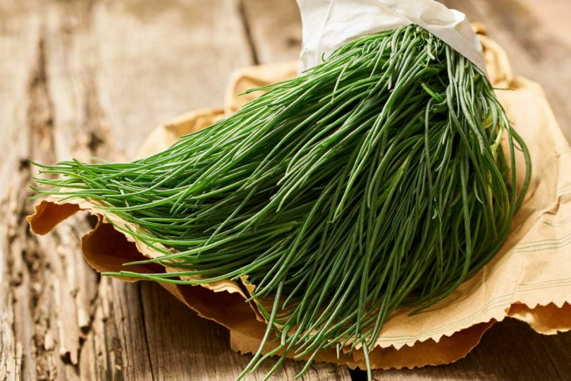 Basische Lebensmittel: Agretti aus Italien