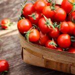 Die Tomaten sind reif - Tipps für die Haltbarmachung