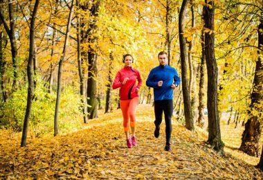 Nutzen Sie Ihre Trainingszeit effektiv