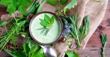 Essbare Wildkräuter: schmackhaft, kostenlos und gesund