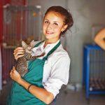 Der Tierschutz als Smalltalk-Thema