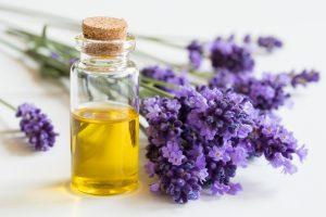 Migräne und Spannungskopfschmerz? Lavendelöl hilft