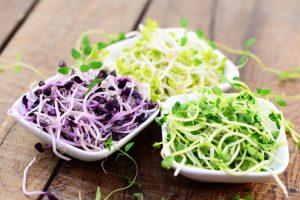 Warum es gut ist, Sprossen in Ihre Ernährung zu integrieren