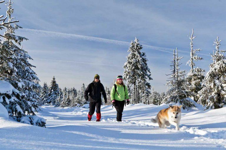 Weihnachten fit bleiben: So kommen Sie fit durch die Weihnachtstage