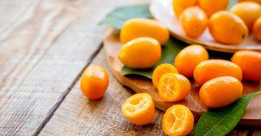 Kumquat: So essen und verarbeiten Sie diese exotische Frucht richtig!