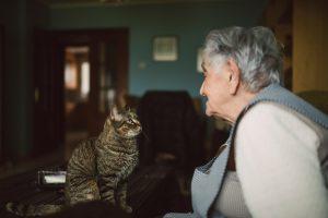 Warum Haustiere die besten Therapeuten für zu Hause sind