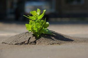 Eine hohe Resilienz macht Ihre Kinder unverwundbar