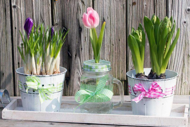 Bastel-Tipps für Ihre Frühlings- und Osterdekoration