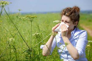 Heuschnupfen - Symptome und wie Sie vorbeugen können