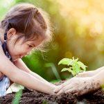 Pflanzen für Kinder – Wecken Sie das Interesse für die Entdeckung der Natur