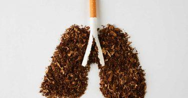 Die Raucherlunge schadet der gesamten Sauerstoffversorgung