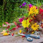 Wunderschönes Zuhause – Machen Sie Dekoration selber