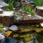 So dekorieren Sie richtig Ihren Teich