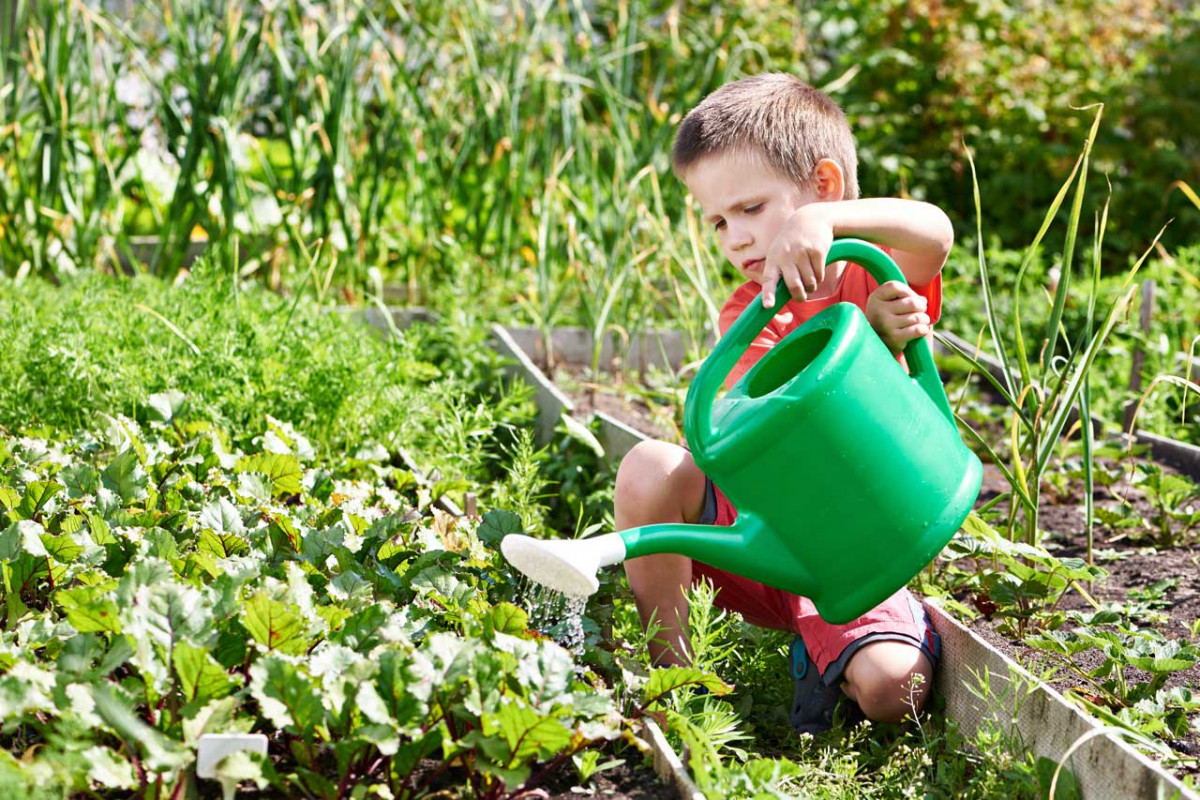 Wie sollte das ideale Beet für Kinder beschaffen sein?