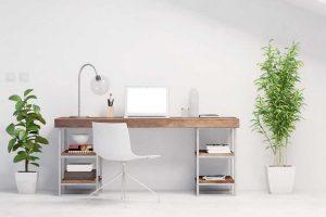 Die besten Pflanzen fürs Büro