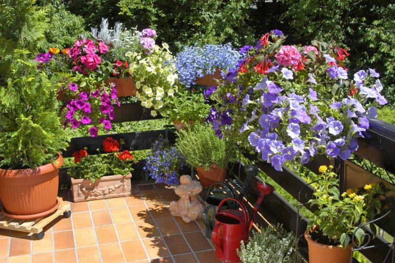 Blumenkästen Gestalten U2013 So Einfach Geht Es