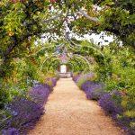 Wunderschöne und einmalige Ideen für Garten und Haus
