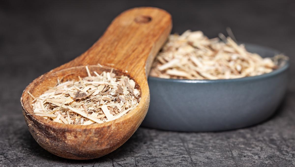 Taigawurzel - Eine pflanzliche Hilfe gegen Stress und Erschöpfung