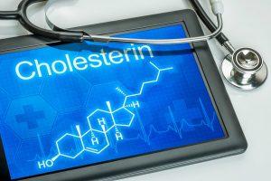 Welche Bedeutung hat Cholesterin?