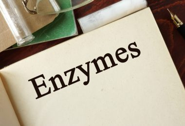 Immunsystem stärken, Krebs bekämpfen - Enzyme helfen
