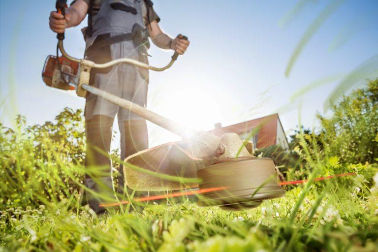 Gartenpflege – diese Geräte benötigen Sie für die Pflege des Rasens