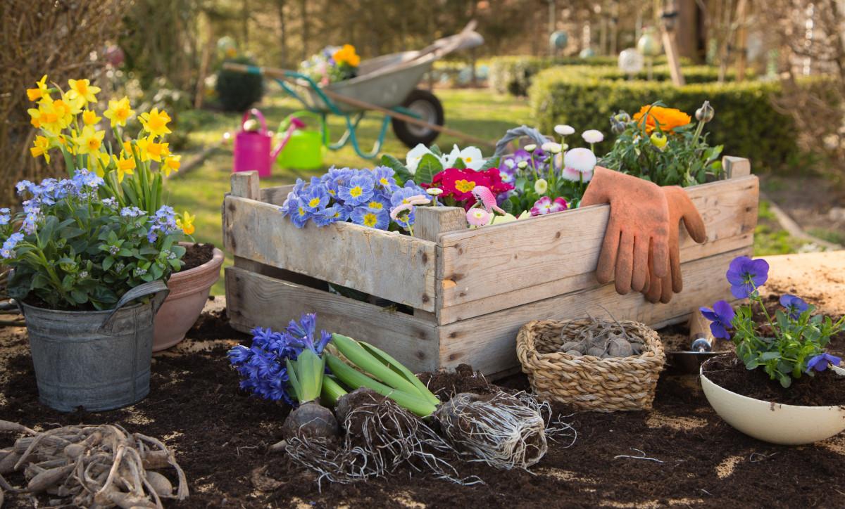 Ein Smalltalk-Thema für Jedermann: der Garten