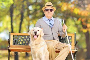 Unsere Augen: Was tun bei Altersretinopathie?